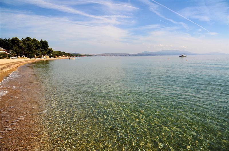 Εικόνα: Δήμος Πολυγύρου
